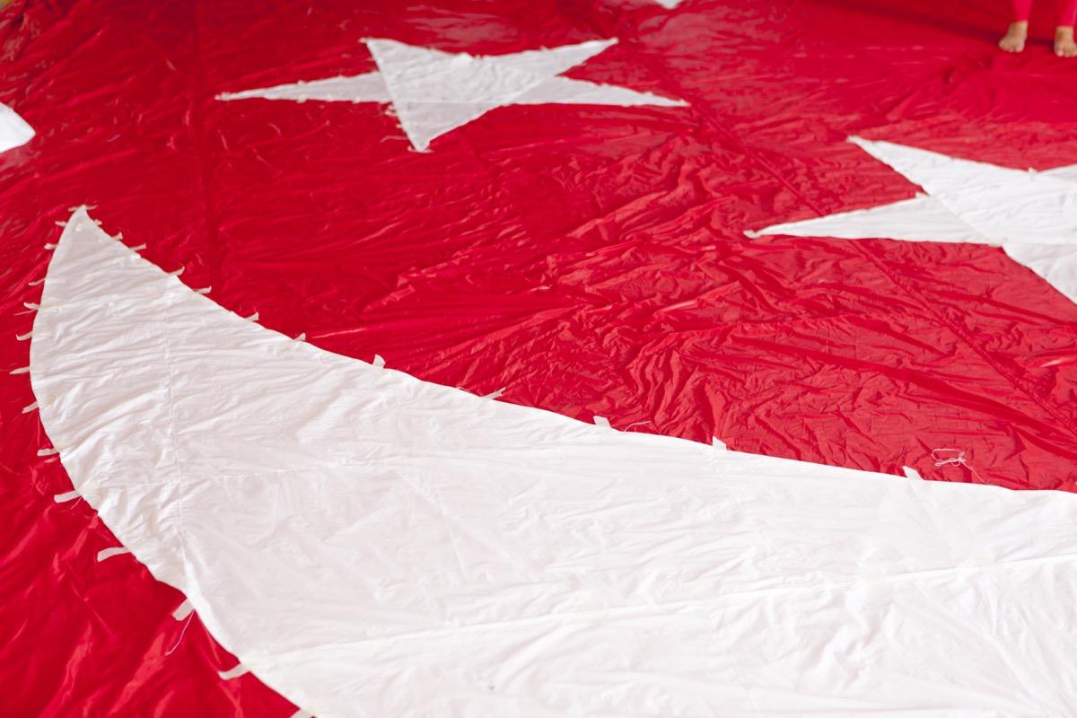 NDP-Flag-13 (1)